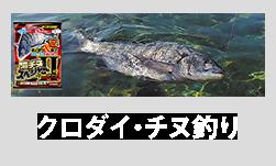 クロダイ・チヌ釣り